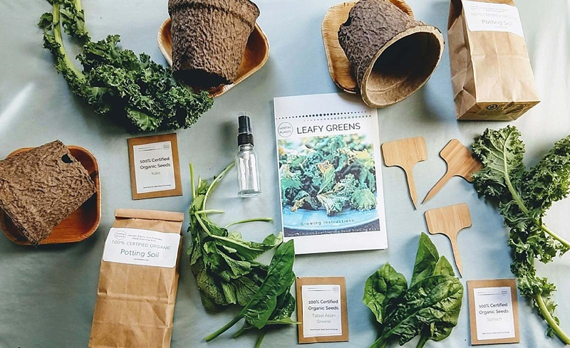 Organic leafy greens seed starter gardening kit Christmas gift idea