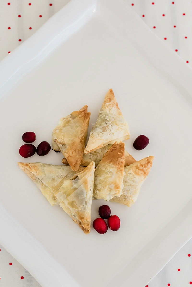 Ingredients for goat cheese and cranberry relish phyllo appetizer recipe
