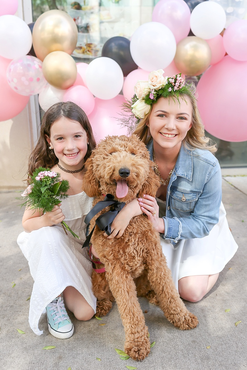 Modern pink and black bridal shower inspiration with adorable dog in a black silk bow