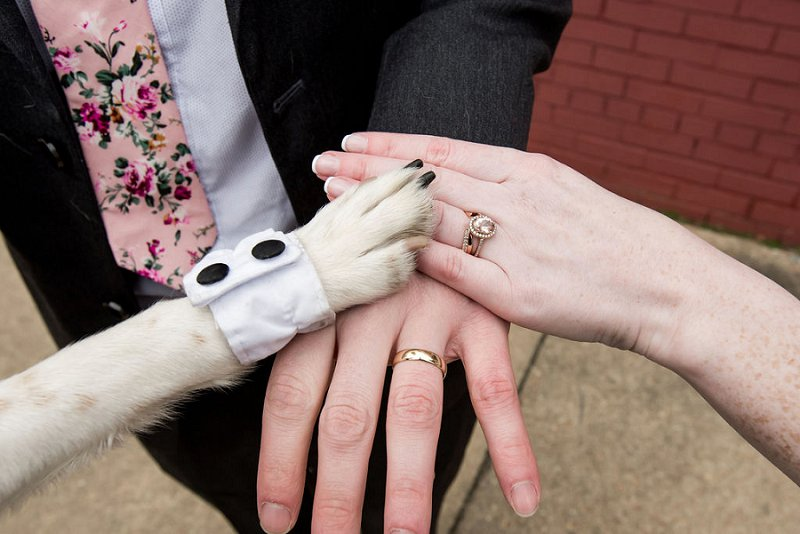 Adorable wedding couple who incorporates their dog into the big day in Richmond Virginia