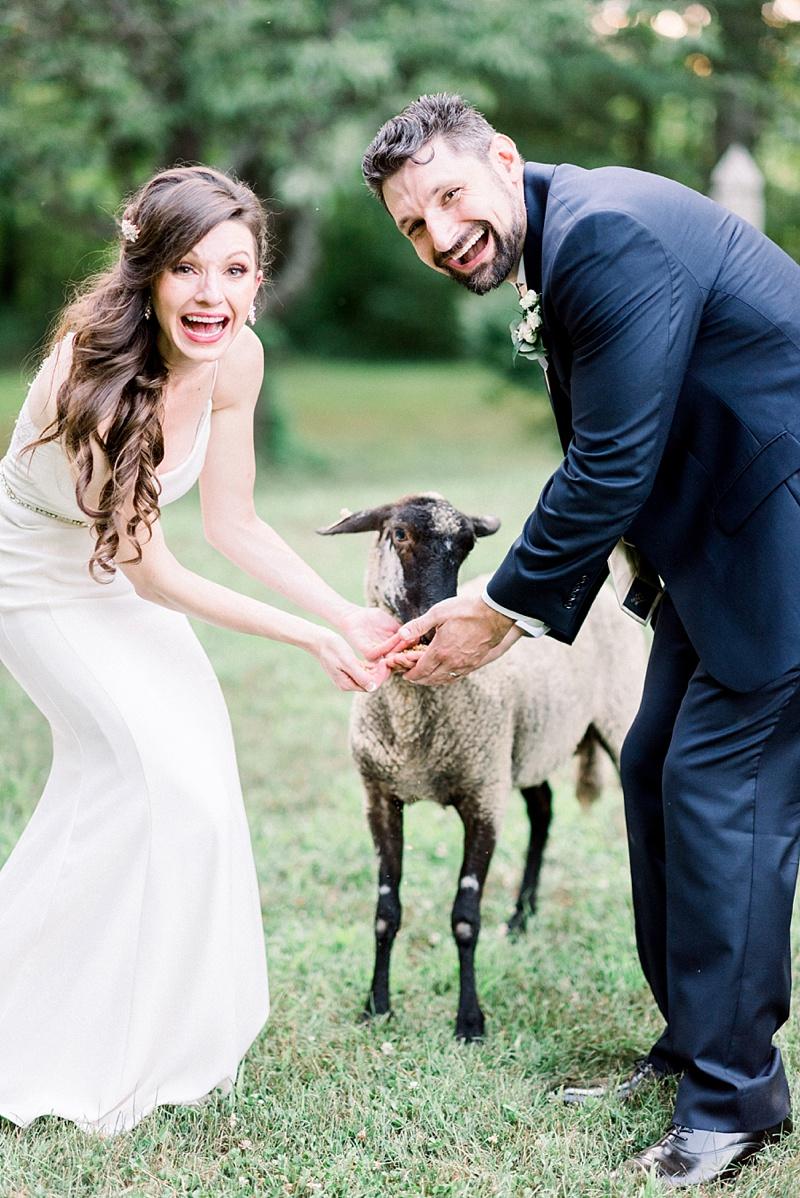 Bride and groom feeding a baby lamb on their wedding day at Seven Springs in Virginia on Coastal Virginia wedding blog